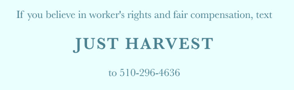 Text Just Harvest